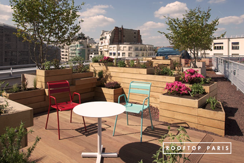 To t terrasse molitor location privatisation rooftop for Rooftop piscine molitor