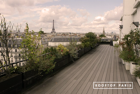 Location & Privatisation - Rooftop Saint-Germain