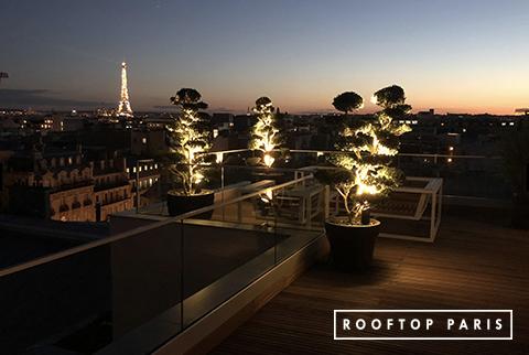 Rooftop avec une vue d'exception sur la dame de Fer